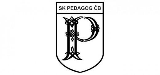 Pedagog_oslavy